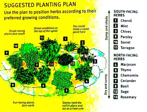 How To Grow Your Own Herbs Planning A Herb Garden Herb Garden Layout