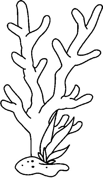 de coral coloring pages