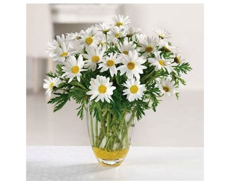 s day flowers 15 best bouquets to order s day flowers best 15 bouquets to order