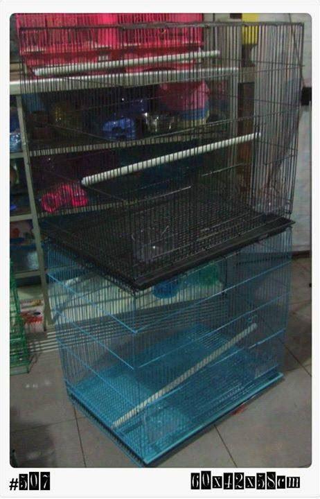 Kandang Jangkrik Burung By Nd Pets kenzo birdshop 49 photos 3 reviews pet service jln