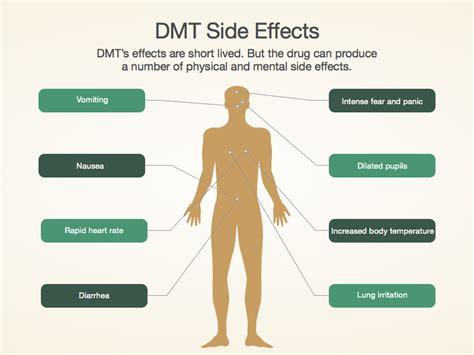 Side Effects Of Detox Medication by Dmt Side Effects Www Pixshark Images