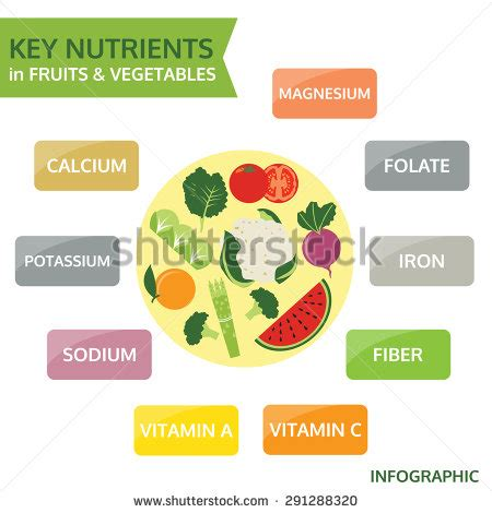 carbohydrates a nutrient nutrients stock photos royalty free images vectors