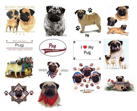 pug stuff for sale pugs pug apparel clothing t shirts sweatshirts hoodies