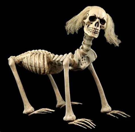 Shadow, The Skeleton Dog » The Worst Things For Sale