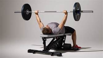 The Bench Press How To Master The Bench Press Coach Exercise Guides