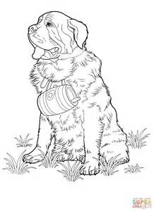 St Bernard Coloring Pages st bernard coloring page free printable coloring pages