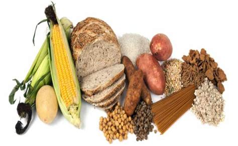 6 complex carbohydrates 6 best gain diets top foods to gain mass