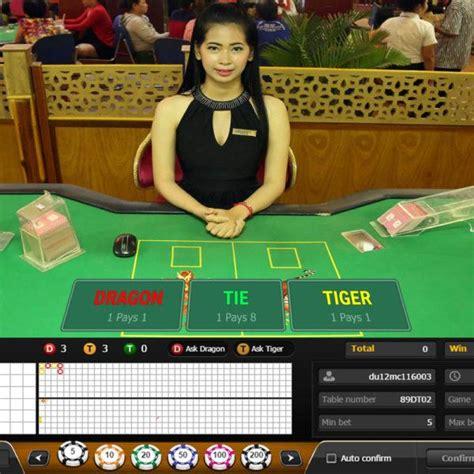 dragon tiger asia  tech