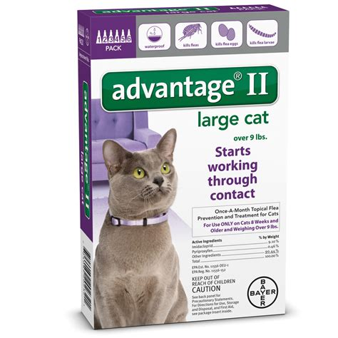 advantage ii large 6 month advantage ii flea large cat for cats 9 lbs