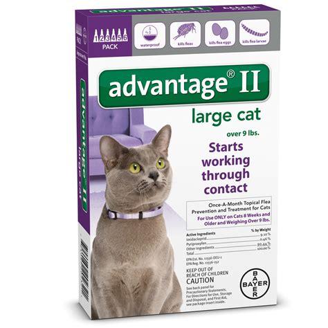 advantage ii large 6 month advantage ii flea large cat for cats 9 lbs