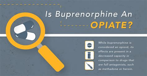 How Do Rehabs Detox You Of Suboxone by Is Buprenorphine An Opiate