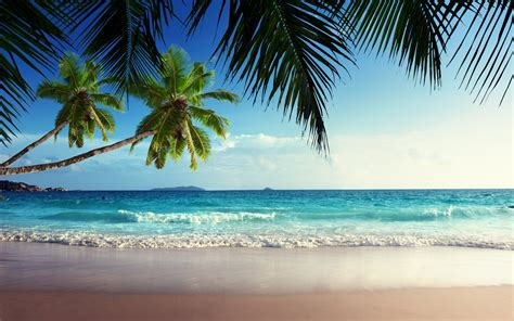 Tropical beach paradise wallpaper amaimagescom tropical paradise