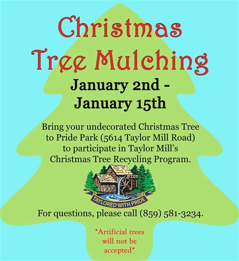 christmas tree mulching gt city of taylor mill ky