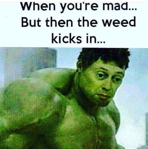 Best Weed Memes - the top 5 best blogs on stoner memes