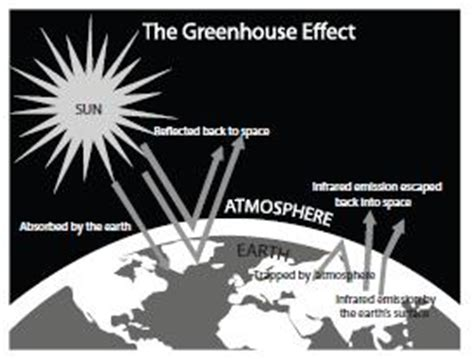 greenhouse effect research paper buy research paper air pollution smog acid