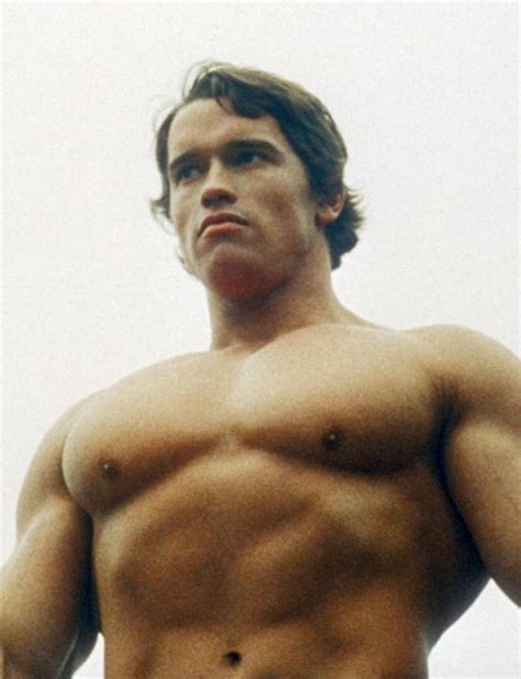 arnold schwarzenegger health epitome of perfection 1197 best cosas y personas que me gustan images on