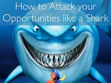how to attack your how to attack your business development like a shark