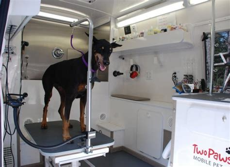 mobile groomer the two paws up mobile pet salon