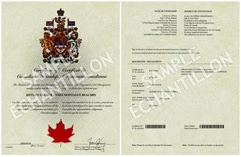 canadian citizenship card template certificate of acceptance canada gallery certificate