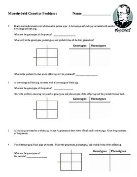 Genetics Practice Problems 3 Monohybrid Problems Worksheet 1 Answers by Monohybrid Cross Worksheet Genetics Worksheets And Crosses