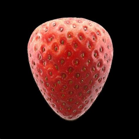 strawberry  model max obj cgtradercom