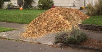 wood chip backyard free wood chips for your yard