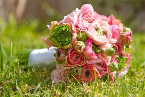 ranunculus bouquet pink ranunculus bouquet signaturek events flowers