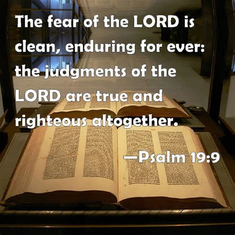 the bible in a disenchanted age the enduring possibility of christian faith theological explorations for the church catholic books psalm 19 9 the fear of the lord is clean enduring for