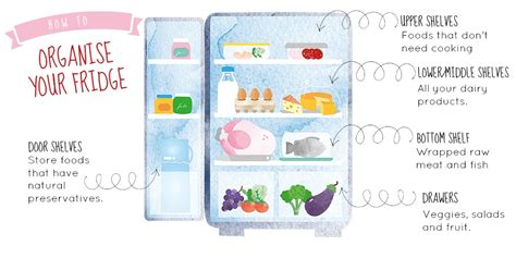 fridge layout guide where to store eggs this is the best place to store your