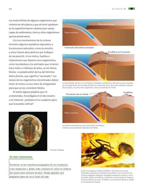 6to grado de ciencias naturales libro de texto libro ciencias naturales 4 grado newhairstylesformen2014 com