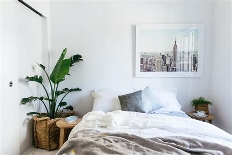 good plants to have in your bedroom feng shui 101 how to maximise qi flow in the bedroom