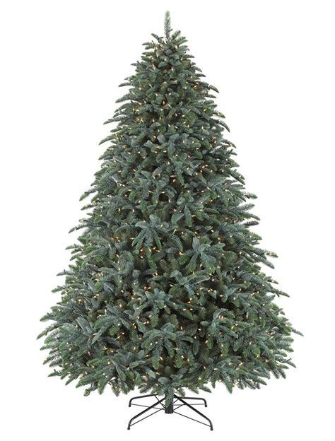 fir christmas tree ideas the 25 best noble fir tree ideas on tree types traditional