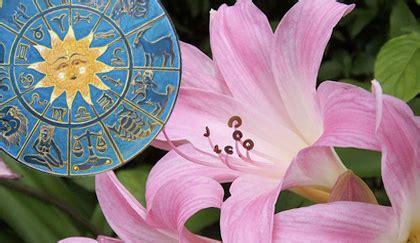 oroscopo dei fiori oroscopo dei fiori qual 232 la pianta della vergine leitv