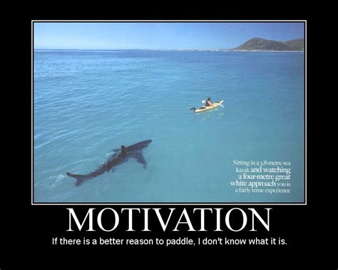 how to a that is not food motivated motivation is not a personality trait motivation hacker