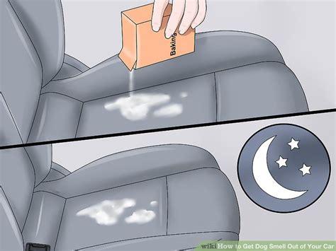 ways   dog smell    car wikihow