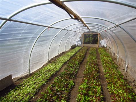 Acre Land by 80k Year Farming On 1 3 Acre Square Foot Gardening