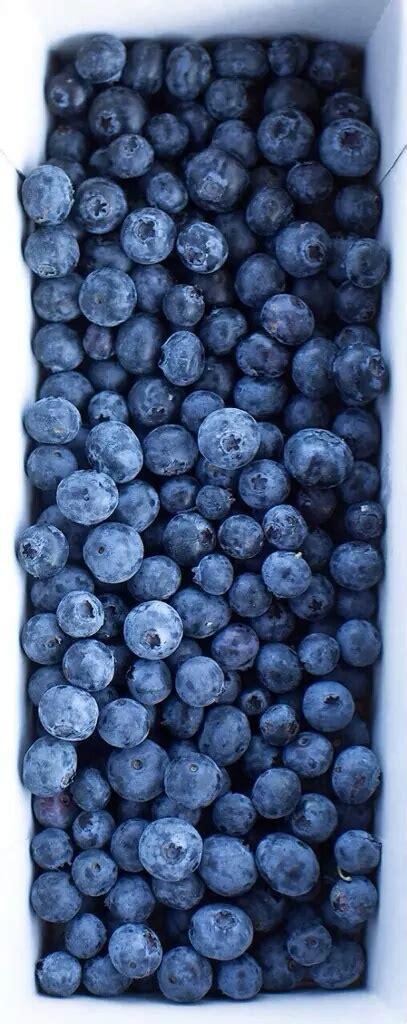 Boyset Blueberry blueberry image 3839410 by olga b on favim