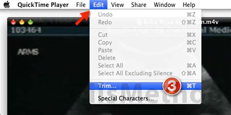 how to update quicktime player on a mac how to download quicktime player 7 pro for free on mac and