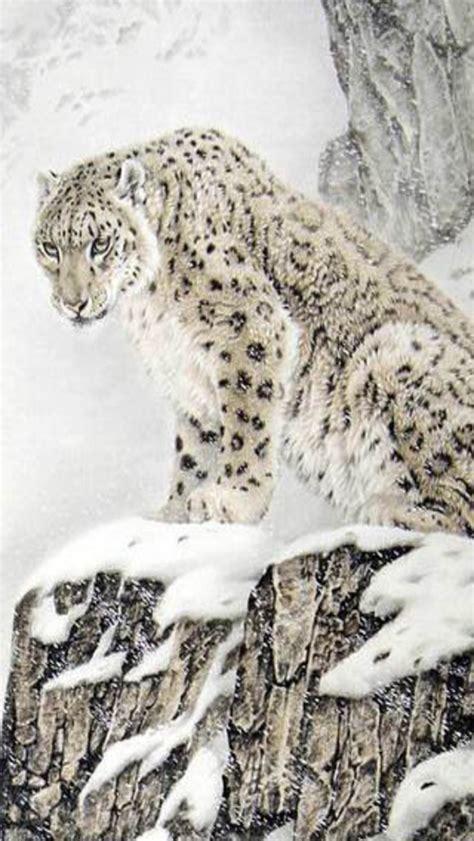 wallpaper iphone 5 leopard top snow leopard iphone wallpaper hd desktop wallpaper