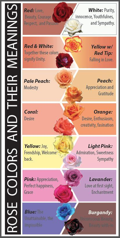 flower color meanings photos what do colors drawings gallery