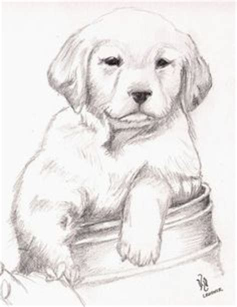 dibujar animales salvajes a lapiz imagui imagenes de amor a lapiz 1 dibujos a lapiz pinterest