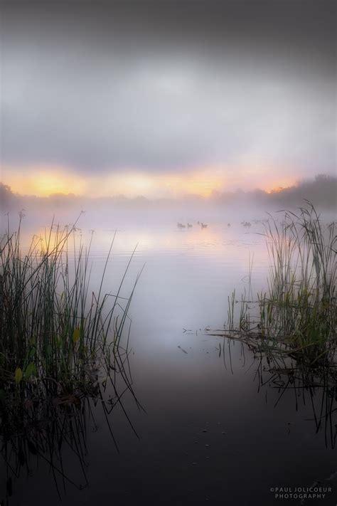 early morning swim misty lake  dawn  paul jolicoeur love