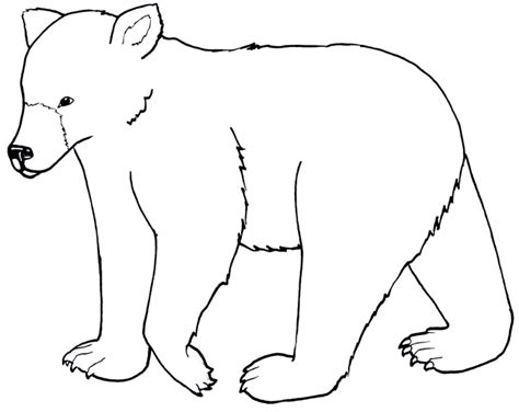 simple bear coloring page bear coloring pages coloring kids