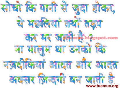 funny love sad birthday sms indian shayri image