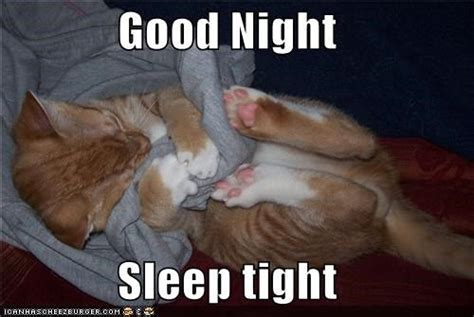Funny Goodnight Memes - good night sleep tight night good night and good night meme