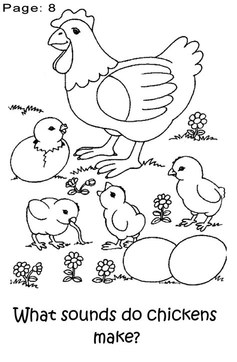 chicken coloring pages preschool chicken coloring book for preschoolers backyard chickens