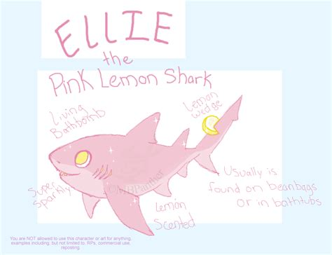 shark pillow that eats you shark pillow that eats you 14 images hanging shoe