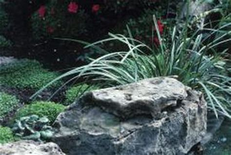 Landscape Bed Definition Types Of Landscaping Flower Bed Rocks Home Guides Sf Gate