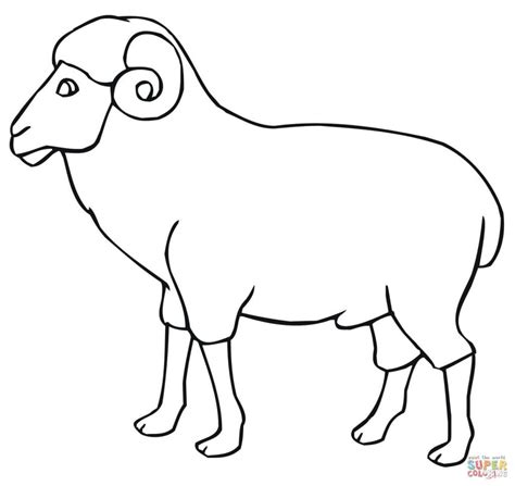 ram coloring page printable ram outline coloring page print download animal free