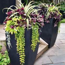17 meilleures id 233 es 224 propos de pots de fleurs sur